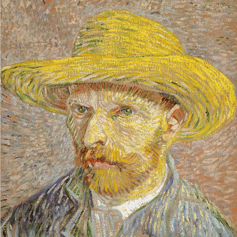 a biography of vincent willem van gogh Vincent van gogh (1853-1890) was a biography: vincent van gogh and scroll back and forth between them as you listen to the narration of willem van gogh, great.